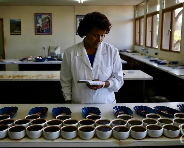 Эфиопия Иргачеффе